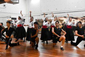 Danza y música que se siente