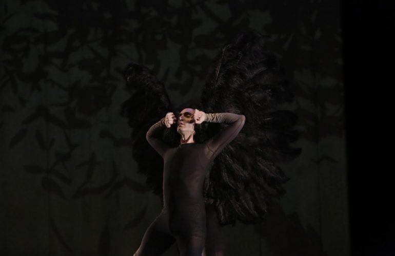 Vuelos, Da Vinci, Aracaladanza, alas negras, bailarín con alas negras.